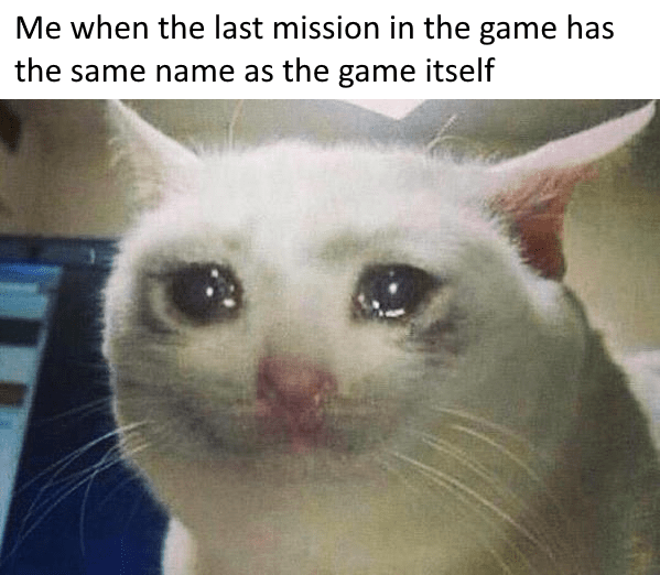 Cat - Me when the last mission in the game has the same name as the game itself