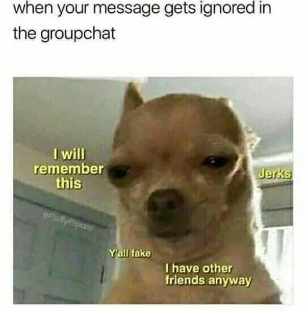 Dog - when your message gets ignored in the groupchat I will remember this Jerks efuffyPiqasso Y'all fake I have other friends anyway