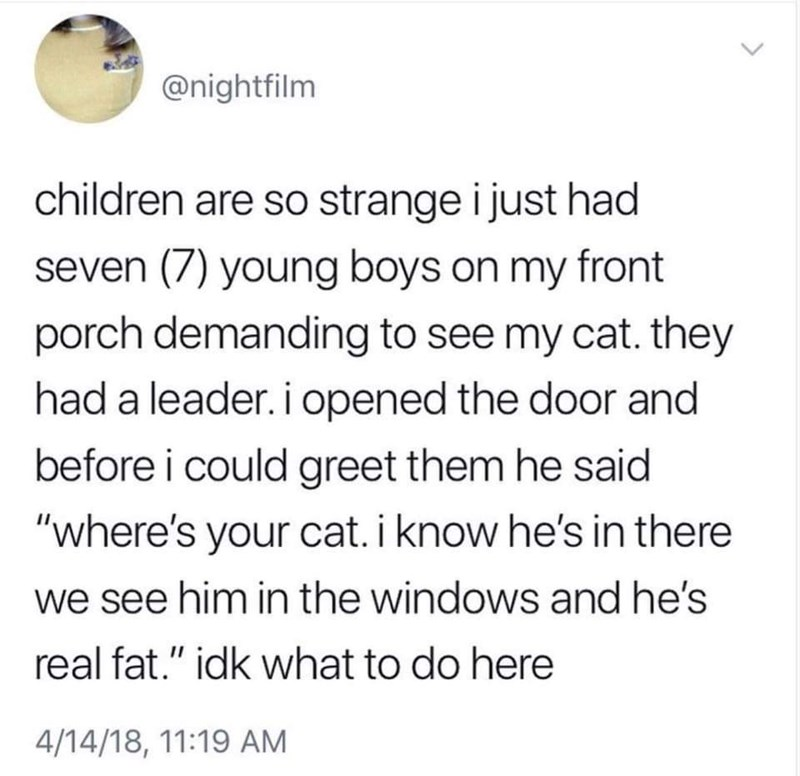 """Text - @nightfilm children are so strange i just had seven (7) young boys on my front porch demanding to see my cat. they had a leader. i opened the door and before i could greet them he said """"where's your cat. i know he's in there we see him in the windows and he's real fat."""" idk what to do here 4/14/18, 11:19 AM"""
