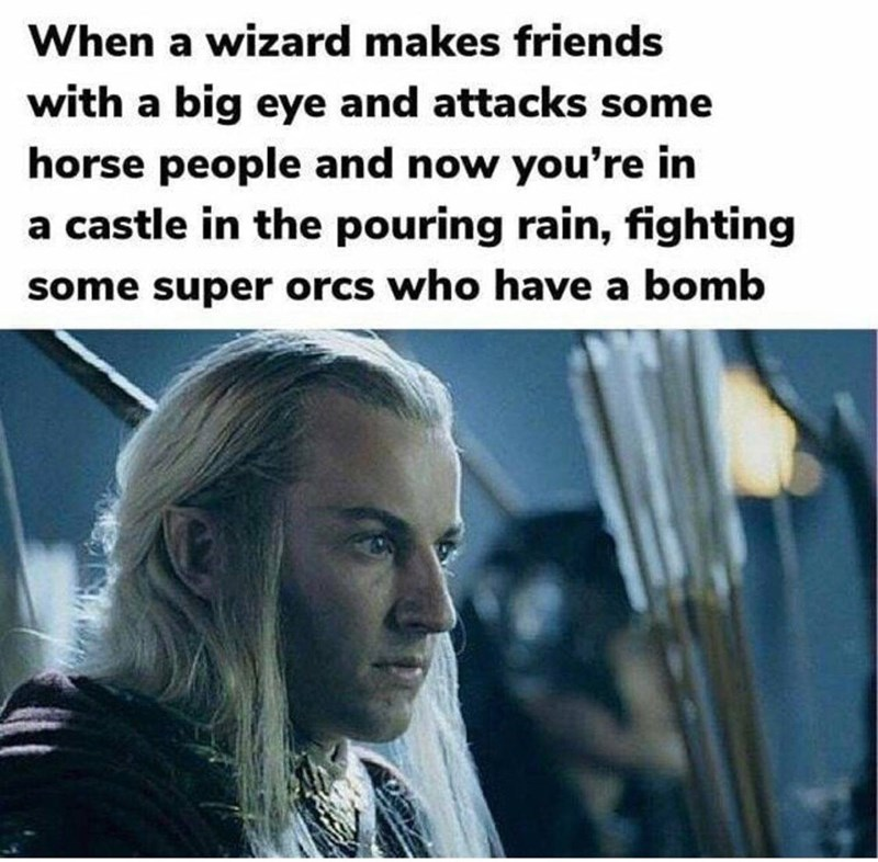 Text - When a wizard makes friends with a big eye and attacks some horse people and now you're in a castle in the pouring rain, fighting some super orcs who have a bomb