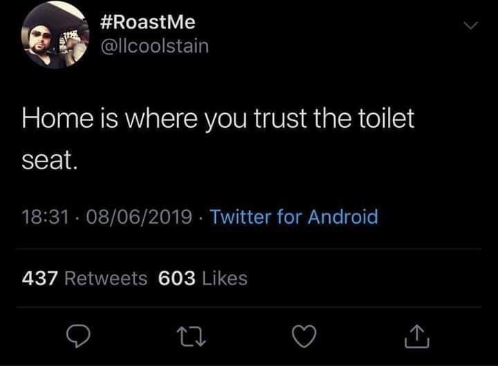 Text - #RoastMe @llcoolstain Home is where you trust the toilet seat. 18:31 · 08/06/2019 · Twitter for Android 437 Retweets 603 Likes