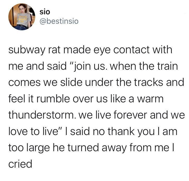 "Text - sio @bestinsio subway rat made eye contact with me and said ""join us. when the train comes we slide under the tracks and feel it rumble over us like a warm thunderstorm. we live forever and we love to live"" I said no thank you I am too large he turned away from me I cried"