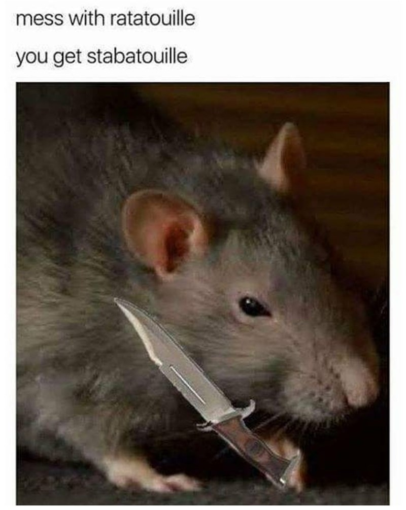 Rat - mess with ratatouille you get stabatouille