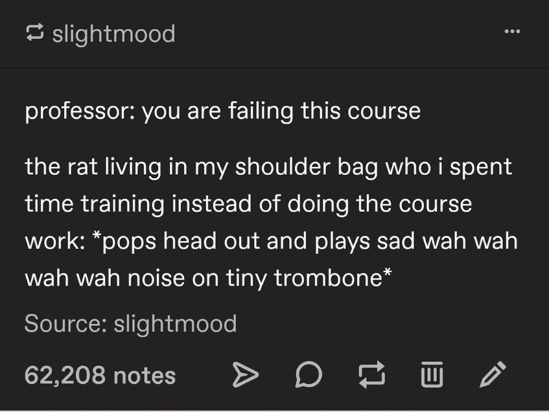Text - 5 slightmood professor: you are failing this course the rat living in my shoulder bag who i spent time training instead of doing the course work: *pops head out and plays sad wah wah wah wah noise on tiny trombone* Source: slightmood 62,208 notes