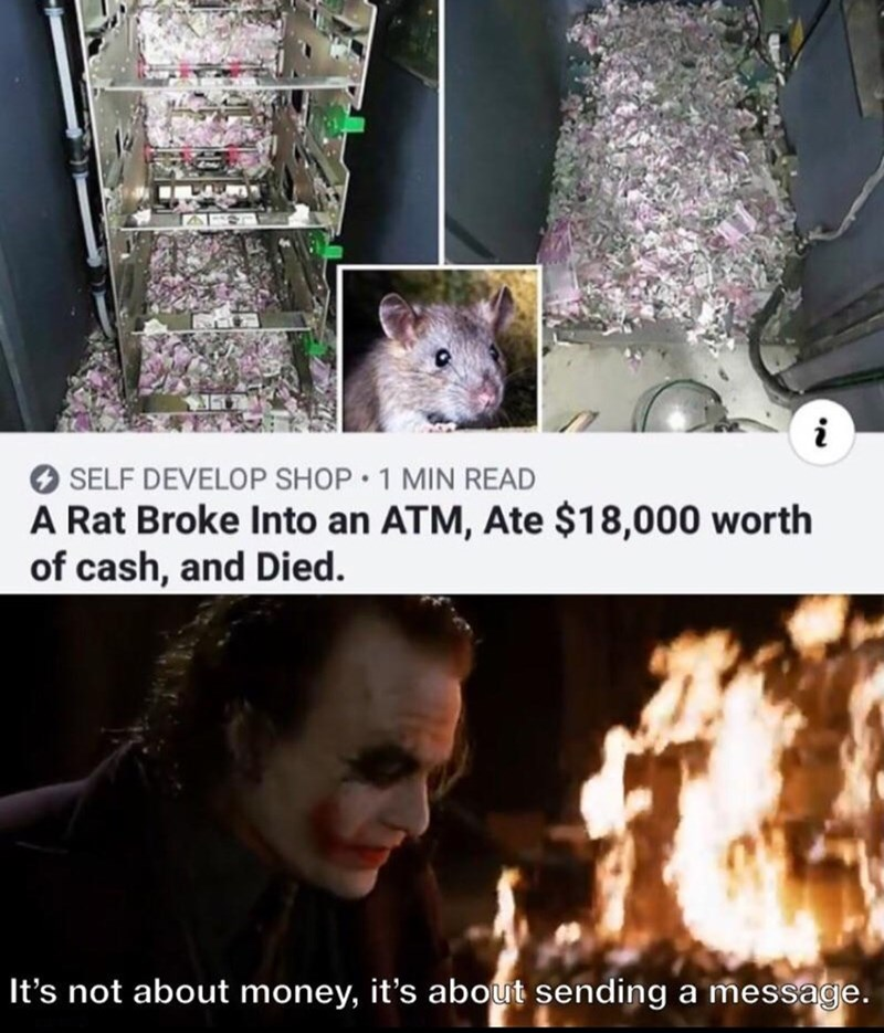 Cat - O SELF DEVELOP SHOP 1 MIN READ A Rat Broke Into an ATM, Ate $18,000 worth of cash, and Died. It's not about money, it's about sending a message.