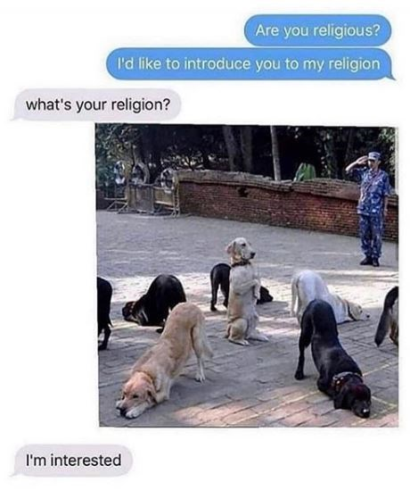 Dog - Are you religious? I'd like to introduce you to my religion what's your religion? I'm interested