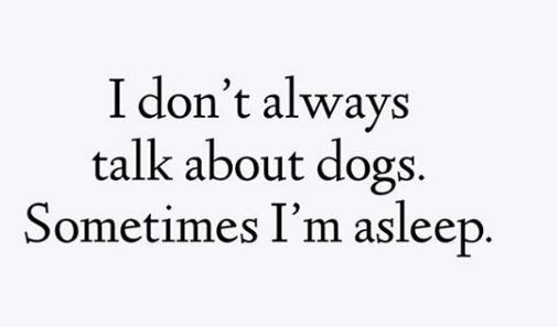 Text - I don't always talk about dogs. Sometimes I'm asleep.
