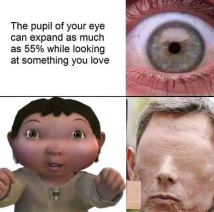 Face - The pupil of your eye can expand as much as 55% while looking at something you love