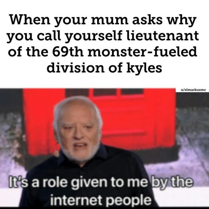 Text - When your mum asks why you call yourself lieutenant of the 69th monster-fueled division of kyles u/elmarkusmc It's a role given to me by the internet people