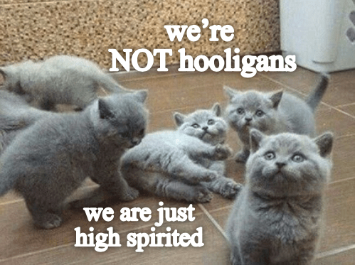 Cat - we're NOT hooligans we are just high spirited