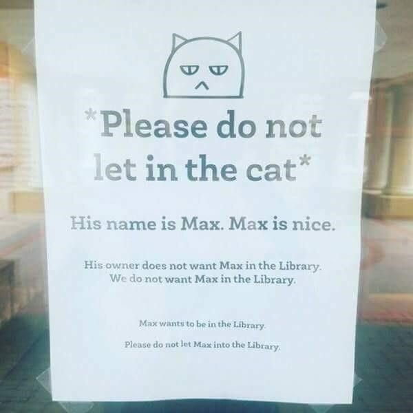 Text - Please do not let in the cat* His name is Max. Max is nice. His owner does not want Max in the Library. We do not want Max in the Library. Max wants to be in the Library. Please do not let Max into the Library.