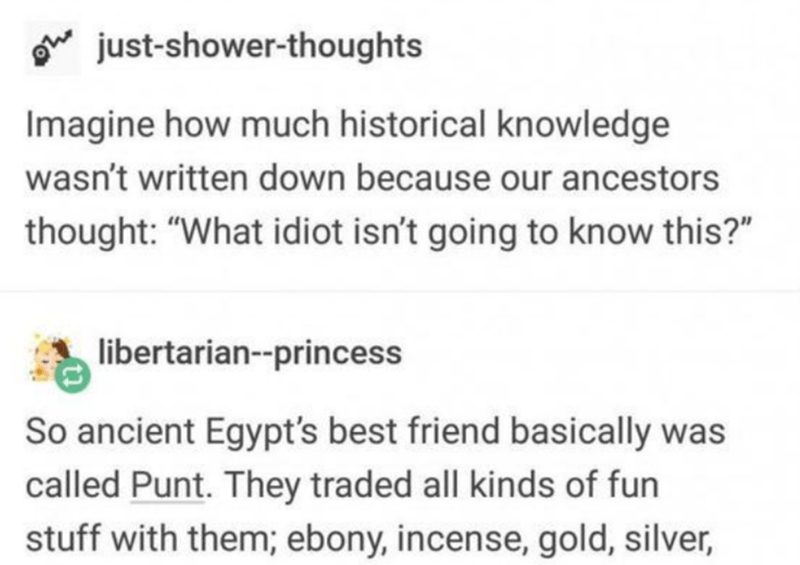 "Text - oe just-shower-thoughts Imagine how much historical knowledge wasn't written down because our ancestors thought: ""What idiot isn't going to know this?"" libertarian--princess So ancient Egypt's best friend basically was called Punt. They traded all kinds of fun stuff with them; ebony, incense, gold, silver,"