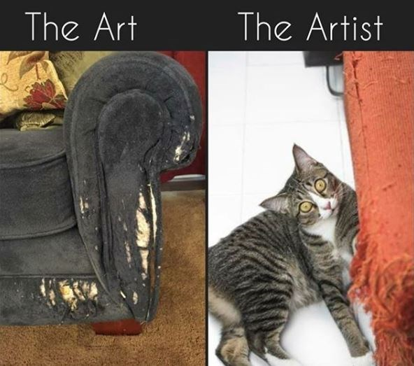 Cat - The Art The Artist