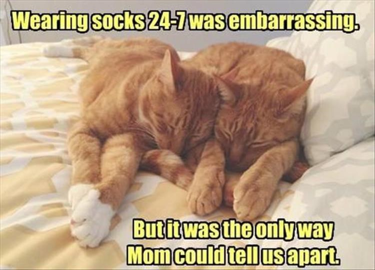 Photo caption - Wearing socks 24-7was embarrassing. But it was the only way Momcould tell usapart.