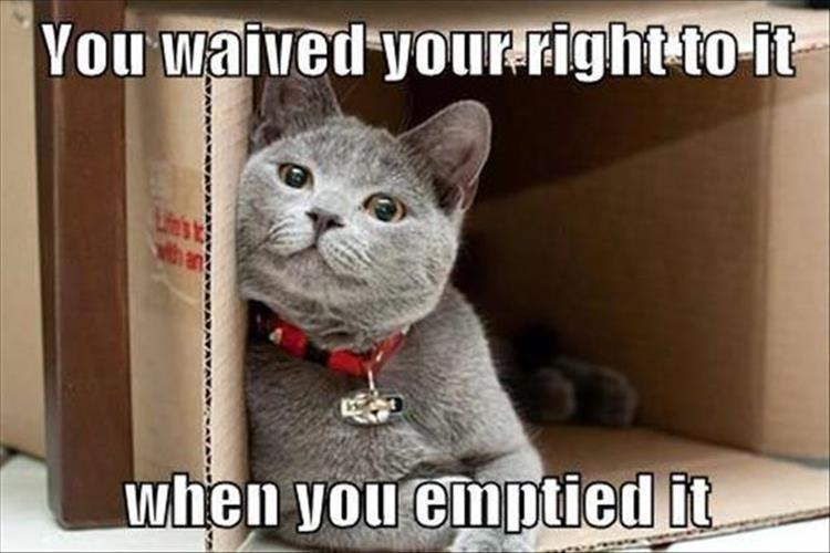 Cat - You waived your-right to-it tha when you emptied it