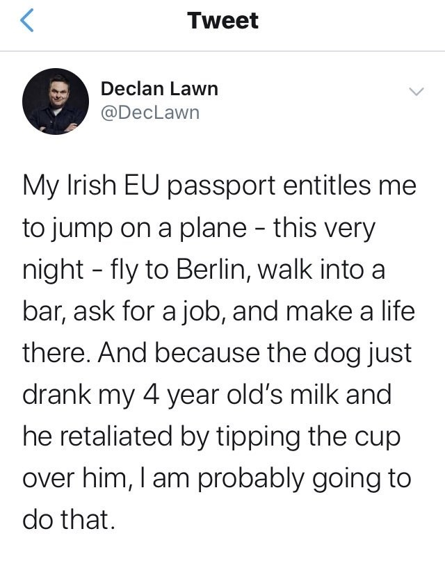 tweet by declawn my irish eu passport entitles me to jump on a plane this very night fly to berlin walk into a bar ask for a job and make a life there. and because the dog just drank my 4 year old's milk and he retaliated by tipping the cup over him i am probably going to do that