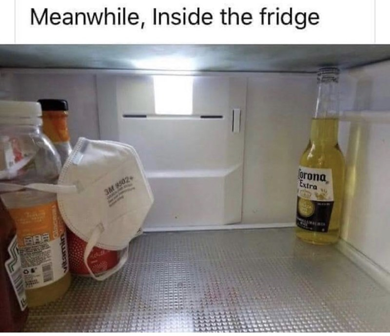 Product - Meanwhile, Inside the fridge orona, Extra 3M 9502