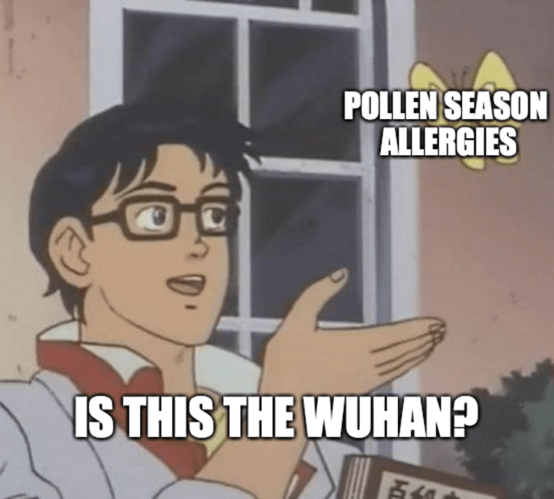 Cartoon - POLLEN SEASON ALLERGIES IS THIS THE WUHAN?