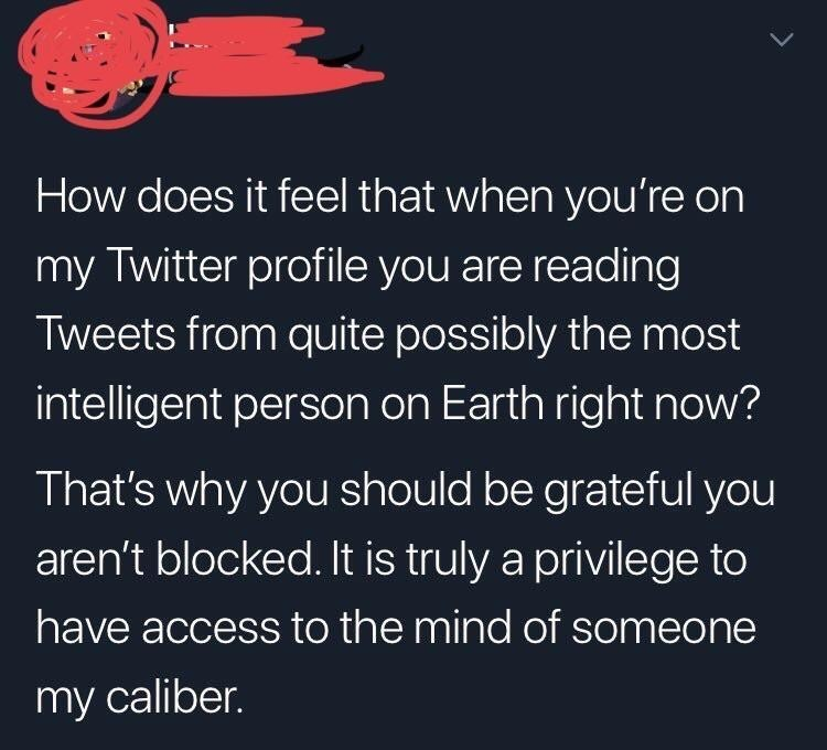 Text - How does it feel that when you're on my Twitter profile you are reading Tweets from quite possibly the most intelligent person on Earth right now? That's why you should be grateful you aren't blocked. It is truly a privilege to have access to the mind of someone my caliber.