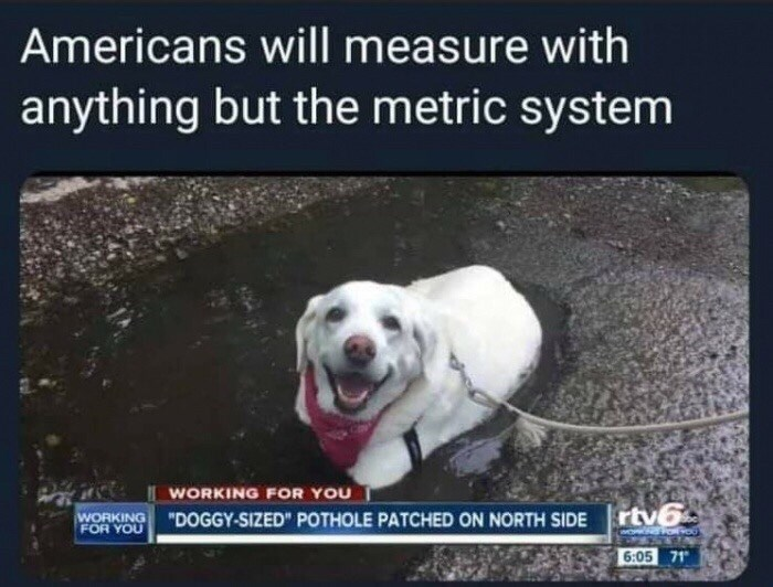 "Funny meme that reads, ""Americans will measure with anything but the metric system"" above a photo of a cute dog in a water-filled pothole and a news headline that calls it a ""doggy-sized pothole"""