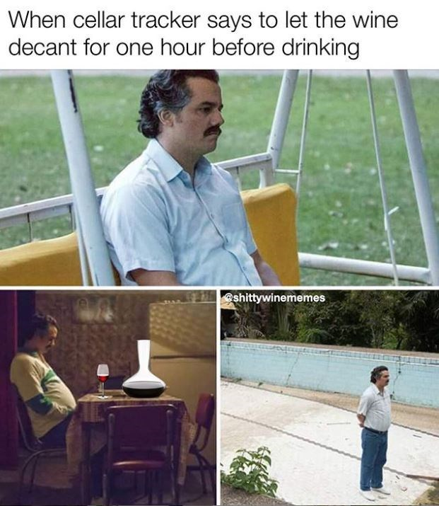 Adaptation - When cellar tracker says to let the wine decant for one hour before drinking shittywinememes