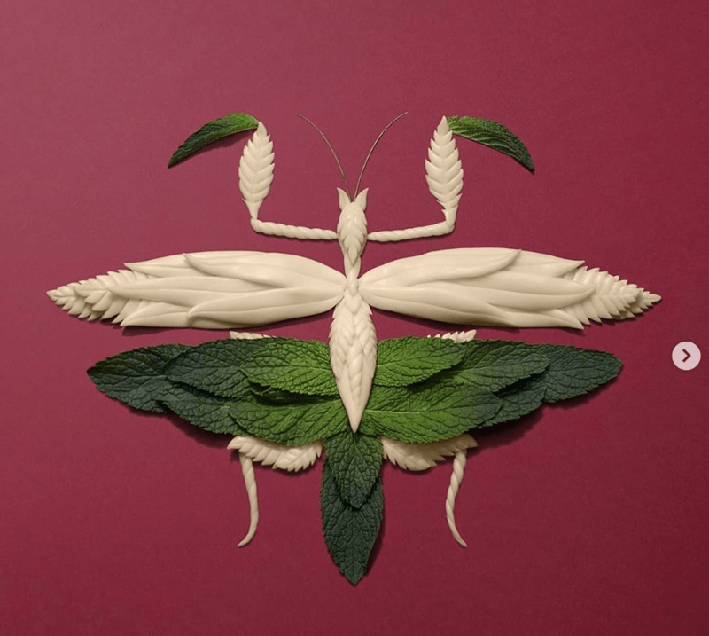 Leaf - <>