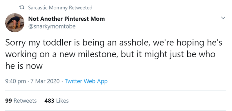 Text - t7 Sarcastic Mommy Retweeted Not Another Pinterest Mom @snarkymomtobe Sorry my toddler is being an asshole, we're hoping he's working on a new milestone, but it might just be who he is now 9:40 pm · 7 Mar 2020 · Twitter Web App 99 Retweets 483 Likes