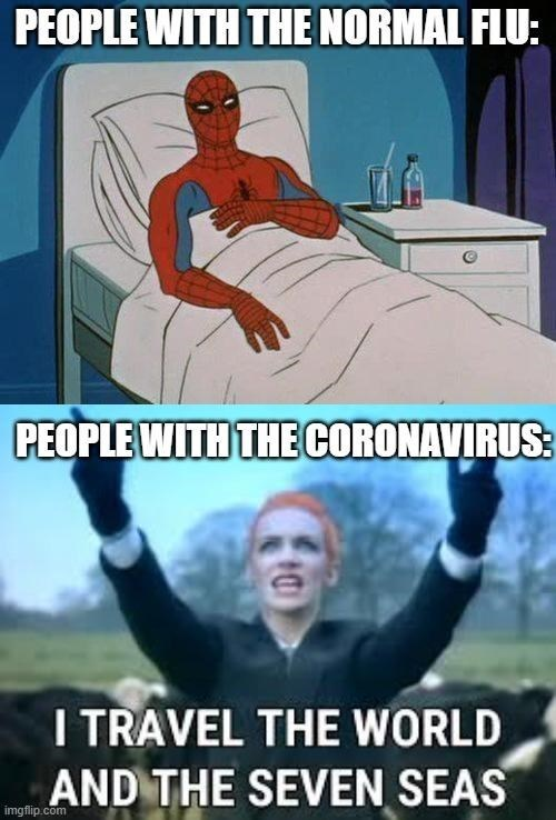 Cartoon - PEOPLE WITH THE NORMAL FLU: PEOPLE WITH THE CORONAVIRUS: I TRAVEL THE WORLD AND THE SEVEN SEAS imgflip.com