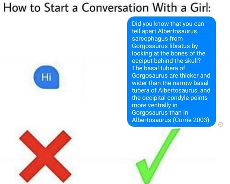 Text - How to Start a Conversation With a Girl: Did you know that you can tell apart Albertosaurus sarcophagus from Gorgosaurus libratus by looking at the bones of the occiput behind the skull? The basal tubera of Gorgosaurus are thicker and wider than the narrow basal tubera of Albertosaurus, and the occipital condyle points more ventrally in Gorgosaurus than in Albertosaurus (Currie 2003). Hi