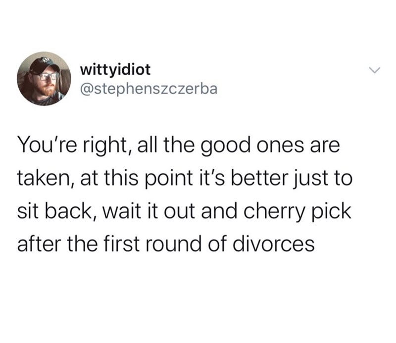 Text - wittyidiot @stephenszczerba You're right, all the good ones are taken, at this point it's better just to sit back, wait it out and cherry pick after the first round of divorces