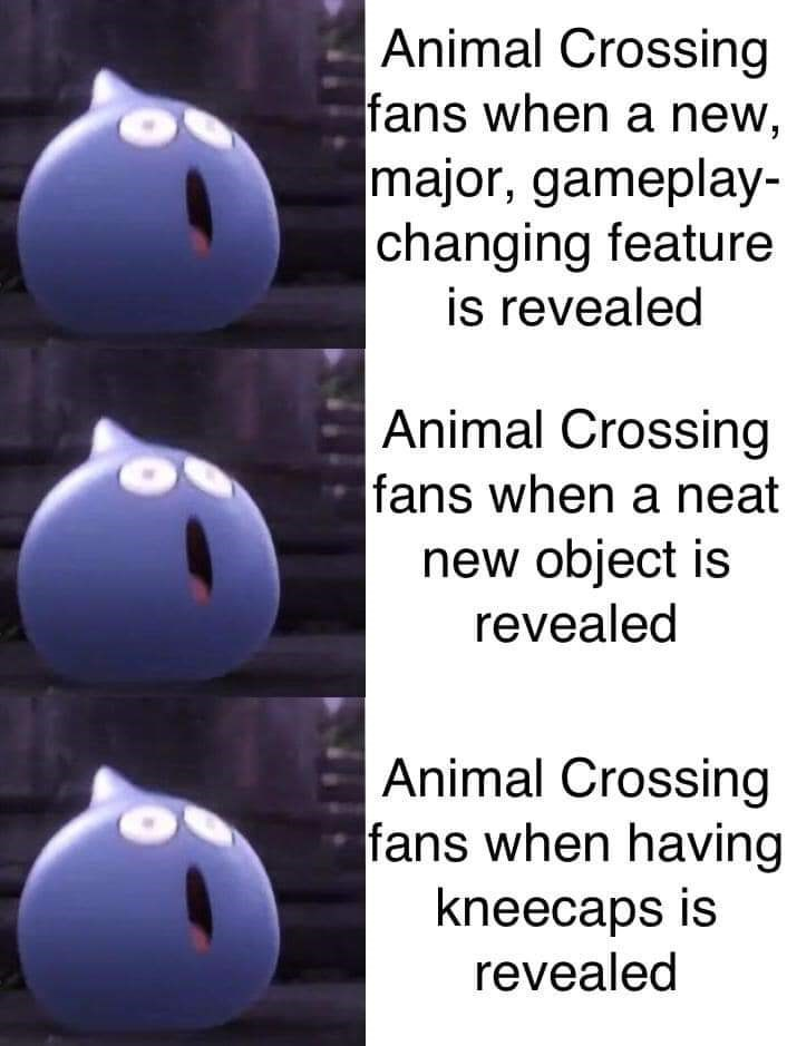 Text - Animal Crossing fans when a new, major, gameplay- changing feature is revealed Animal Crossing fans when a neat new object is revealed Animal Crossing fans when having kneecaps is revealed