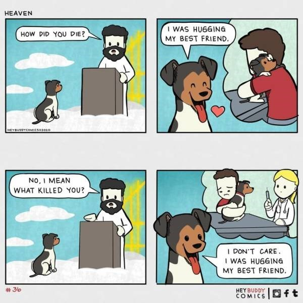 Cartoon - HEAVEN WAS HUGGING HOW DID YOU DIE? MY BEST FRIEND. HEYBUDDYCOMIES1z0za NO, I MEAN WHAT KILLED YOU? I DON'T CARE. I WAS HUGGING MY BEST FRIEND. # 36 HEY BUDDY COMICS Oft Eo