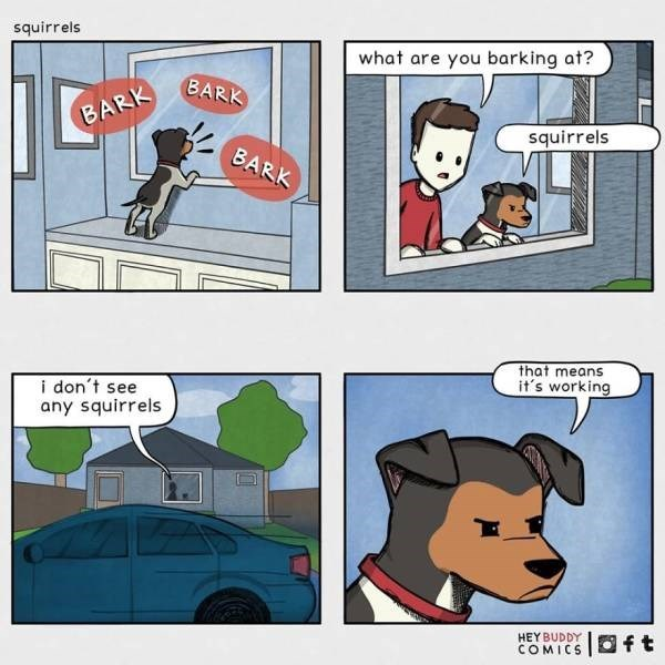 Cartoon - squirrels what are you barking at? BARK BARK squirrels BARK that means it's working i don't see any squirrels HEY BUDDY COMICS Oft