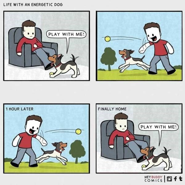 Cartoon - LIFE WITH AN ENERGETIC DOG PLAY WITH ME! FINALLY HOME 1 HOUR LATER PLAY WITH ME! HEY BUDDY COMICS Oft