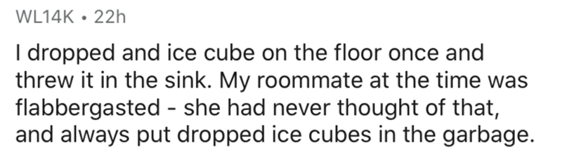 Text - WL14K • 22h I dropped and ice cube on the floor once and threw it in the sink. My roommate at the time was flabbergasted - she had never thought of that, and always put dropped ice cubes in the garbage.