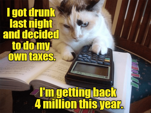 Cat - I got drunk last night and decided to do my own taxes. I'm getting back 4 million this year.