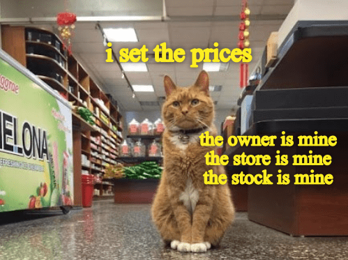 Cat - i set the prices sgrne ELONA the owner is mine the store is mine the stock is mine