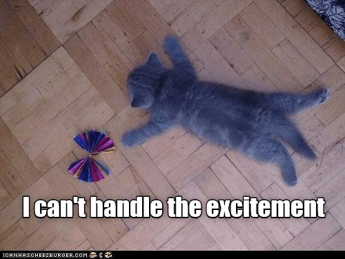 Cat - I can't handle the excitement ICANHASCHEEZEURGER.COM