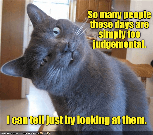 Cat - So many people these days are simply too judgemental. Ican tell just by looking at them. ICANHASCHEEZEURGEROOM