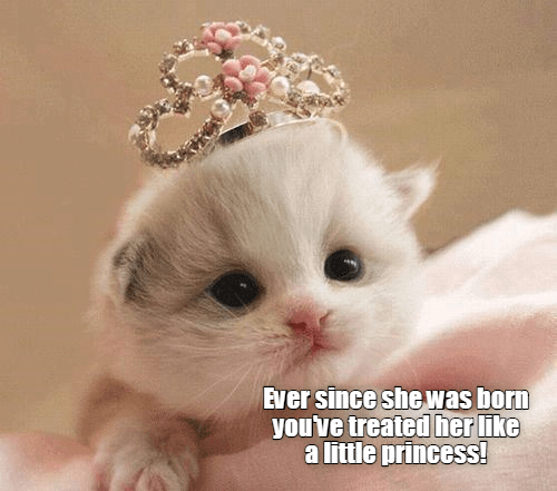 Cat - Ever since she was born you've treated her like a little princess!