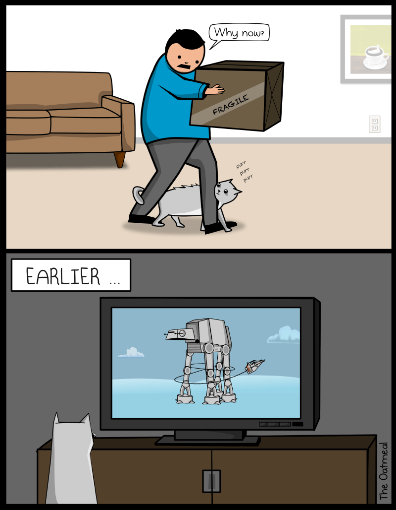 funny comic illustration first panel is a man carrying a box while a cat rubs against his legs second panel is the cat watching the star wars scene in which the AT walker gets taken down