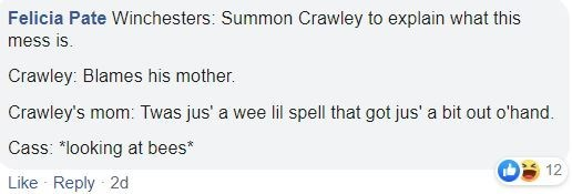 """Text - Felicia Pate Winchesters: Summon Crawley to explain what this mess is. Crawley: Blames his mother. Crawley's mom: Twas jus' a wee lil spell that got jus' a bit out o'hand. Cass: """"looking at bees* 12 Like Reply 2d"""