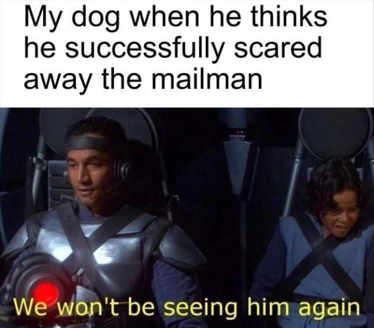 dog meme   my dog when he thinks he successfully scared away the mailman we won't be seeing him again   star wars bobba fett
