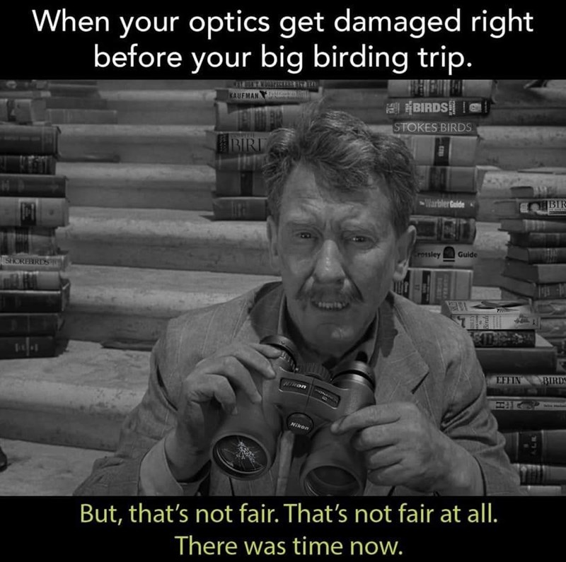 Text - When your optics get damaged right before your big birding trip. KAUFMAN E BIRDS STOKES BIRDS BIRL Warbler Gaide BIR rossley Guide SHOREBRDS 61 SDEO EFFIN Nikon CHneteCrird Nikon But, that's not fair. That's not fair at all. There was time now. BOCATE