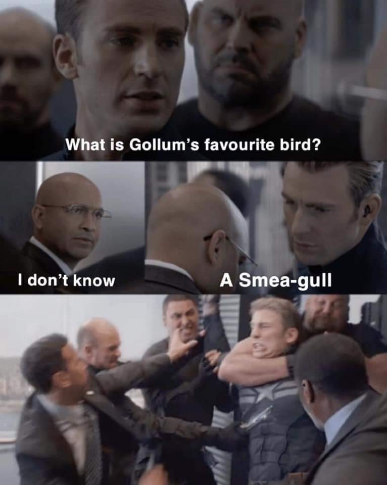 Facial expression - What is Gollum's favourite bird? I don't know A Smea-gull