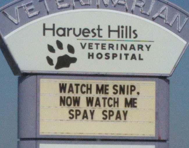 Signage - VE Haruest Hills AN VETERINARY HOSPITAL WATCH ME SNIP, NOW WATCH ME SPAY SPAY