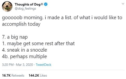 Text - Thoughts of Dog @dog_feelings gooooob morning. i made a list. of what i would like to accomplish today 7. a big nap 1. maybe get some rest after that 4. sneak in a snoozle 4b. perhaps multiple 3:20 PM Mar 3, 2020 - TweetDeck 16.7K Retweets 144.2K Likes
