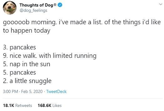 Text - Thoughts of Doge @dog_feelings gooooob morning. i've made a list. of the things i'd like to happen today 3. pancakes 9. nice walk. with limited running 5. nap in the sun 5. pancakes 2. a little snuggle 3:00 PM Feb 5, 2020 - TweetDeck 18.1K Retweets 168.6K Likes