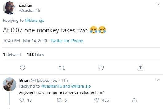 Text - sashan @sashan16 Replying to @klara_sjo At 0:07 one monkey takes two 10:40 PM - Mar 14, 2020 · Twitter for iPhone 1 Retweet 153 Likes Brian @Hobbes_Too - 11h Replying to @sashan16 and @klara_sjo Anyone know his name so we can shame him? O 10 12 5 436