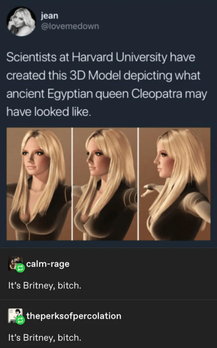 Hair - jean @lovemedown Scientists at Harvard University have created this 3D Model depicting what ancient Egyptian queen Cleopatra may have looked like. calm-rage It's Britney, bitch. theperksofpercolation It's Britney, bitch.